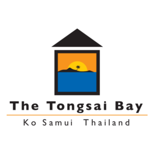 partner_tongsaibay